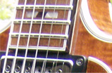 The Frets